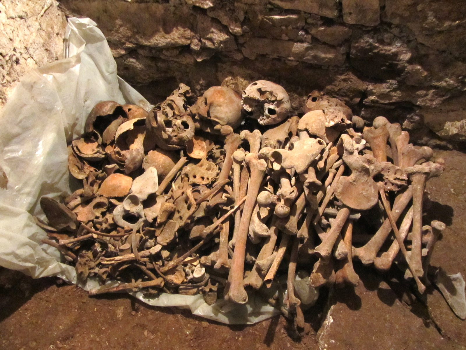pile of bones - HD1600×1200