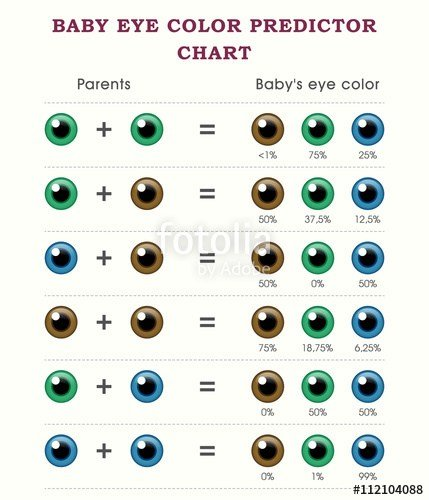 The Best Baby Eye Color Predictor Chart Template Stock Image And Pictures