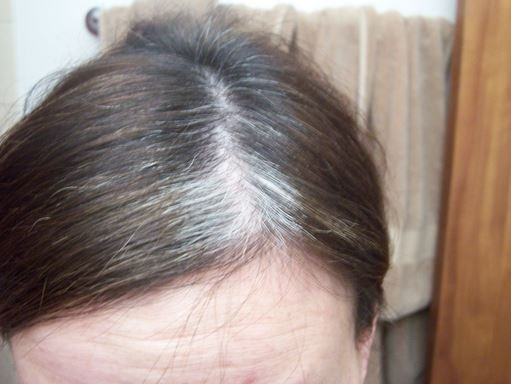 The Best Best Hair Color For Gray Hair Coverage Natural Dye At Pictures