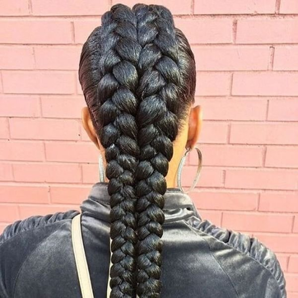 The Best Two Braids Hairstyles Hairstyle Ideas For Everyone Pictures