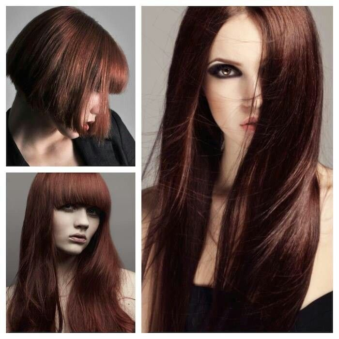 The Best 25 Beautiful Cinnamon Brown Hair Color Ideas On Pinterest Pictures