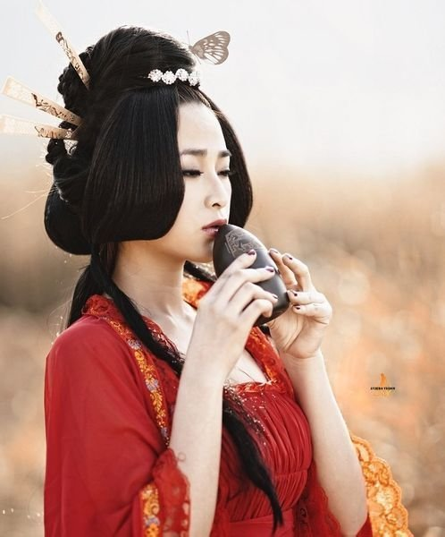 The Best 168 Best Traditional Asian Hairstyles Images On Pinterest Geishas Hanfu And Chinese Fashion Pictures