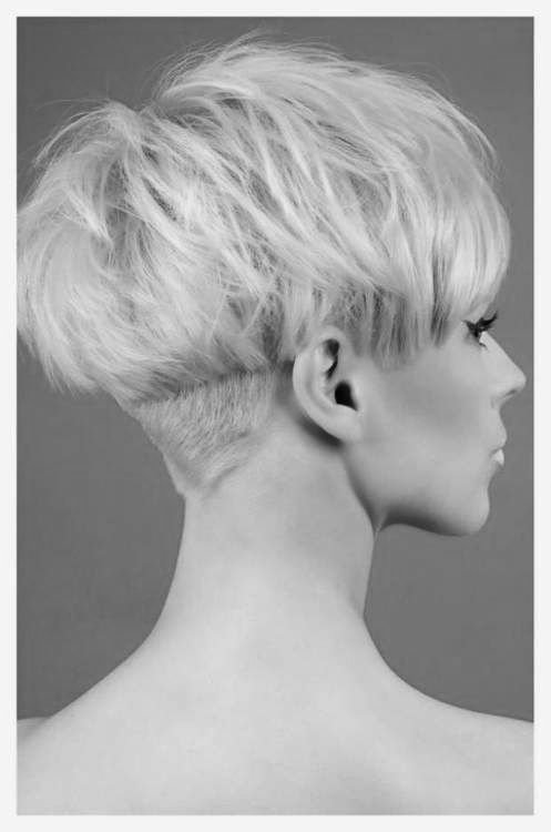 The Best Best 25 Bowl Haircuts Ideas On Pinterest Bowl Cut Hair Pictures