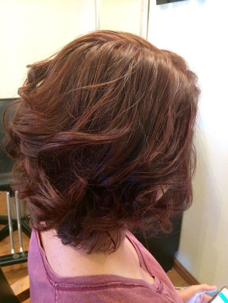 The Best Best 25 Mahogany Brown Hair Ideas On Pinterest Mahogany Pictures