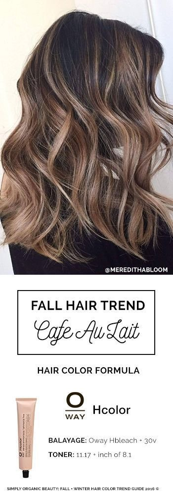 The Best Best 25 Fall Balayage Ideas On Pinterest Fall Hair Pictures