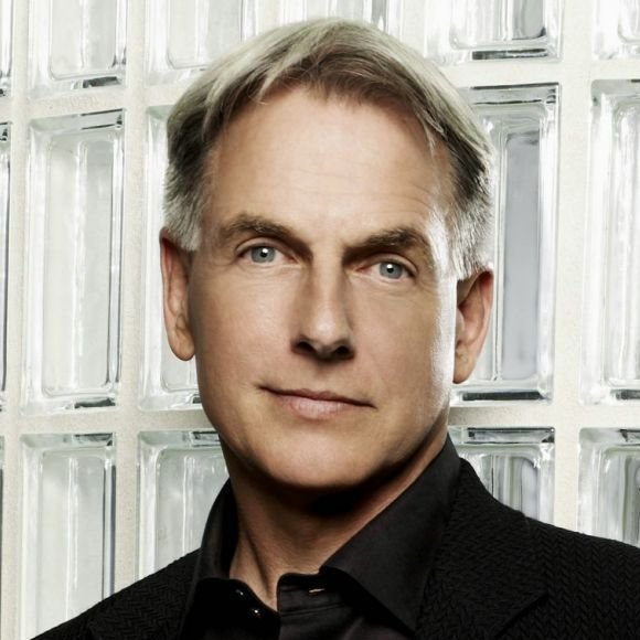 The Best Leroy Jethro Gibbs Hairstyle Gibbs And The Gang Pictures