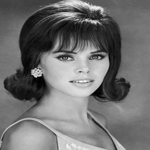 The Best Coolest 1960S Hairstyles For Women Hairstylesco Pictures