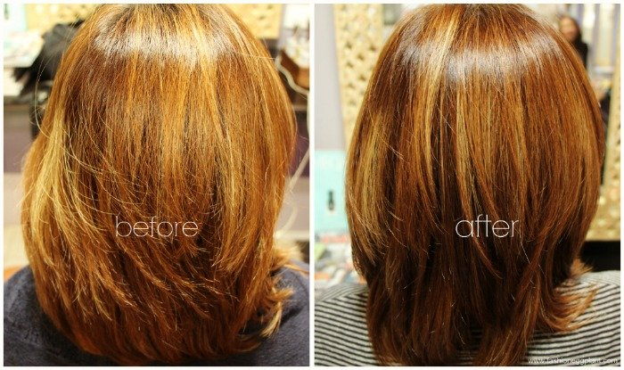 The Best Phyto Hair Color Reviews Hairstyle Inspirations 2018 Pictures