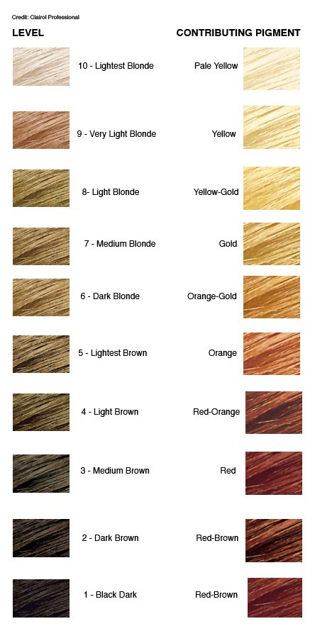 The Best How To Achieve A Level 8 Hair Color The Most Difficult Of Pictures