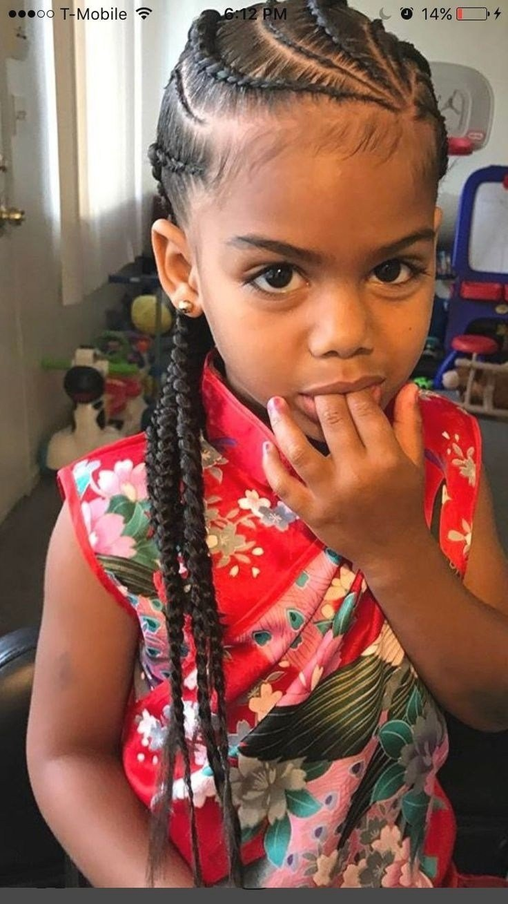 The Best Little Girls Braids Hairstyles Fade Haircut Pictures