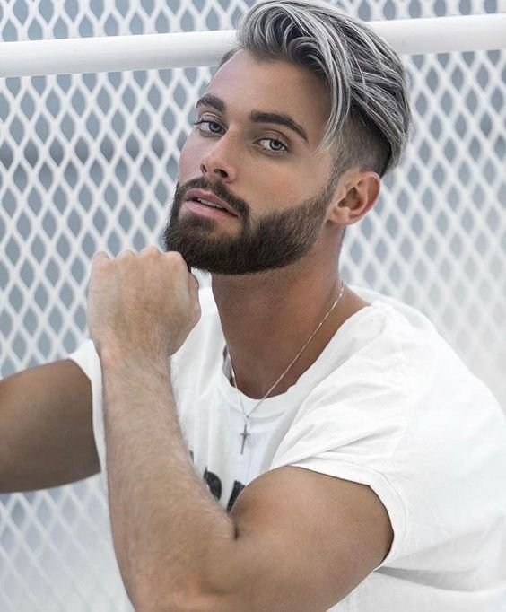The Best Is The Gray Hair For Men Trend Here To Stay 21 Photos Of Pictures