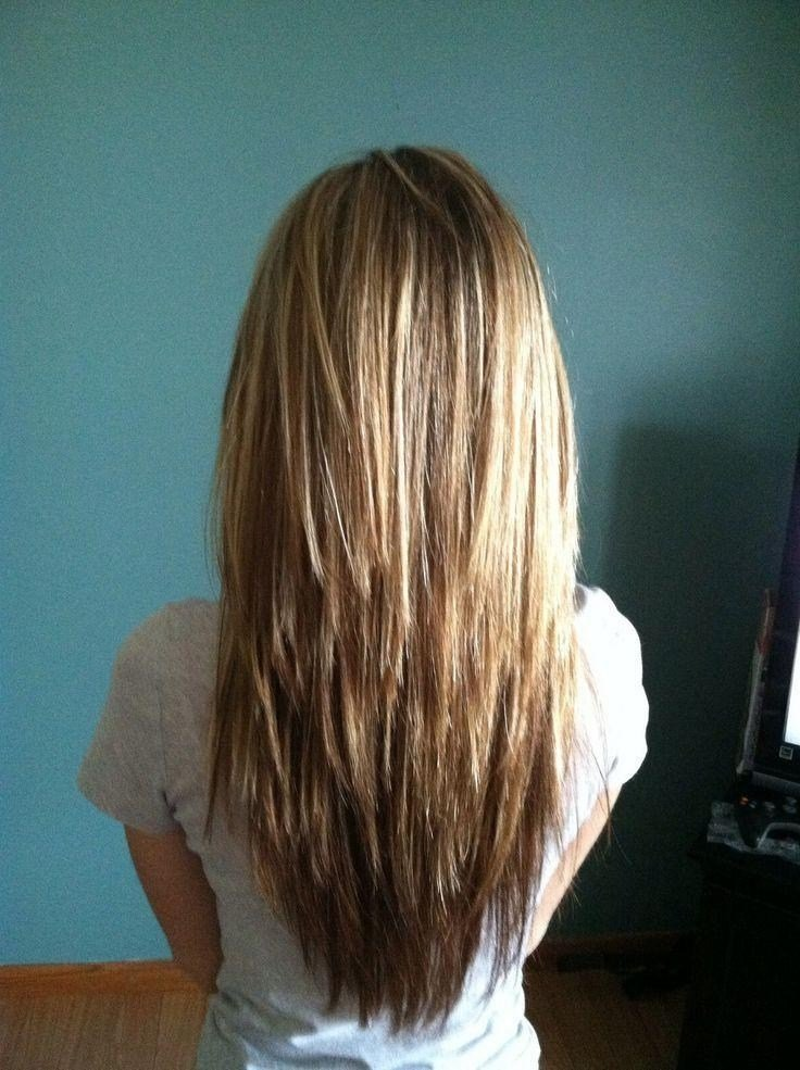 The Best 15 Ideas Of Long Hairstyles Layers Back View Pictures