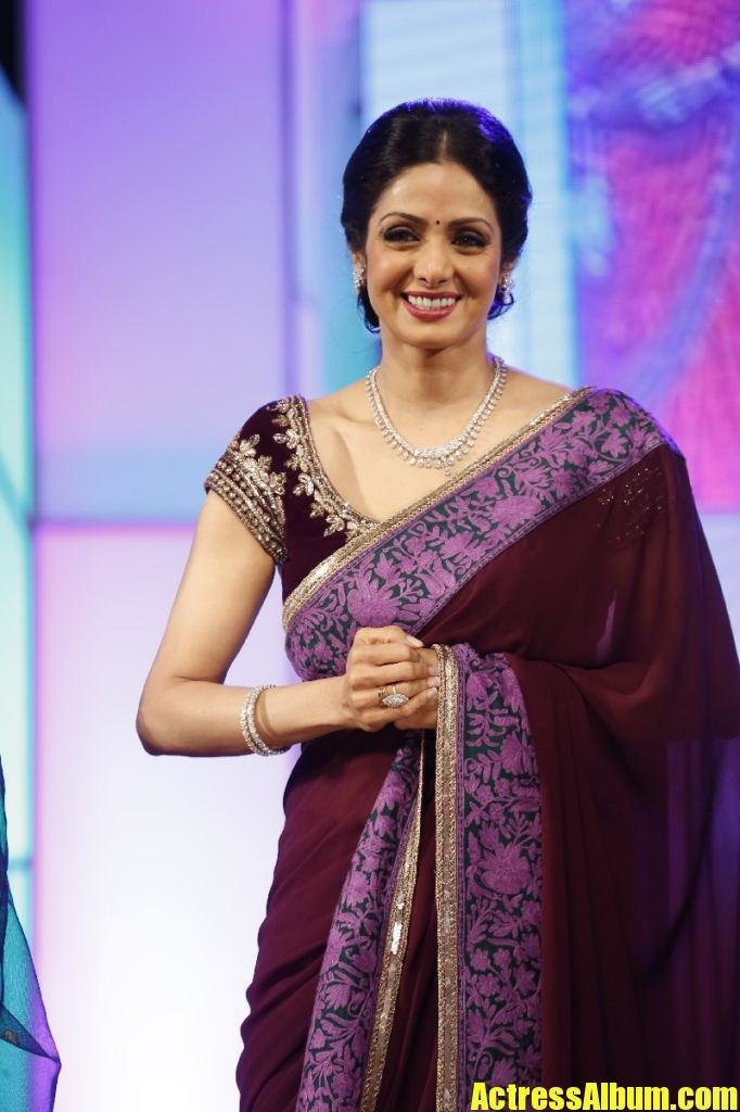 The Best Sri Devi Stills In Colorful Maroon Saree Actress Album Pictures