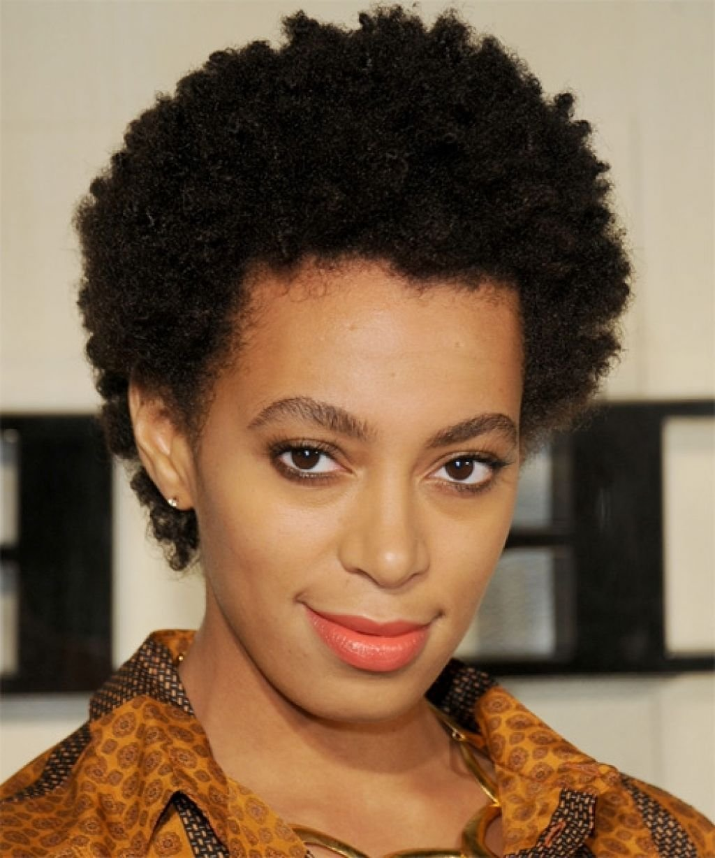 The Best Natural Hairstyles 16 Short Natural Hairstyles You Will Pictures