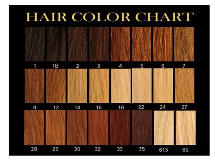 The Best Honey Brown Hair Color Chart Google Search Hair Ideas Pictures