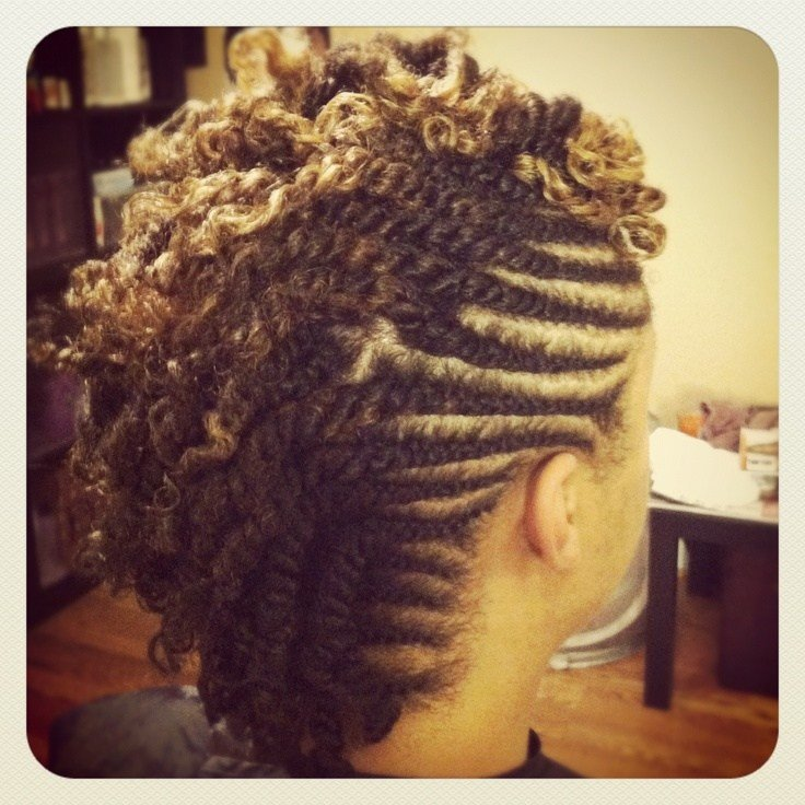 The Best Double Twist Mohawk Naturaltress Salon Pinterest Mohawks And Locs Pictures