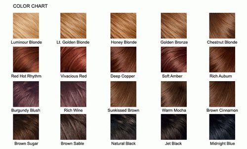 The Best Brown Hair Color Chart 2013 Hairstyles Haircuts Pictures