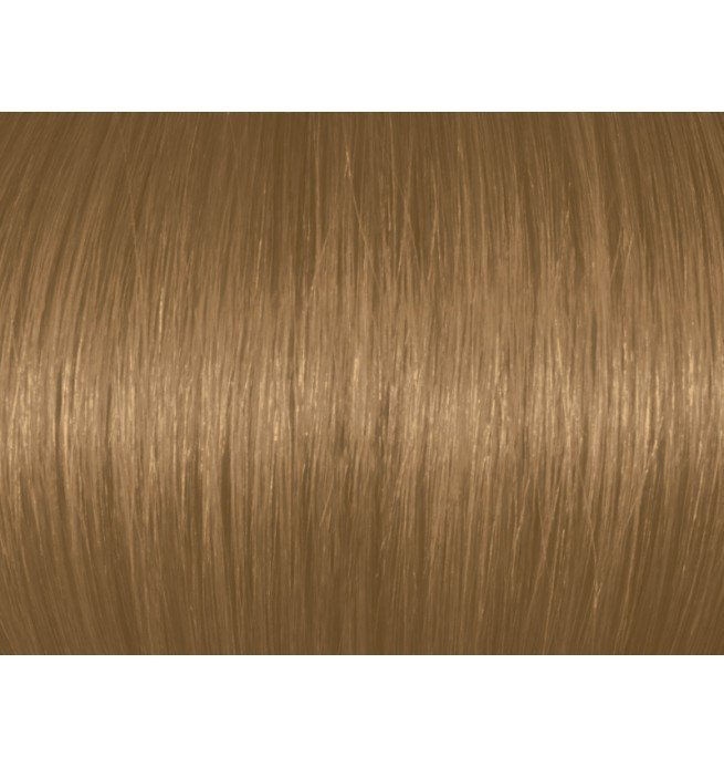 The Best Professional Hair Color With Argan Oil Natural Blonde 7N Pictures