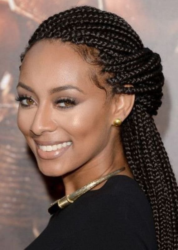 The Best 50 Best Black Braided Hairstyles For Women 2019 Cruckers Pictures