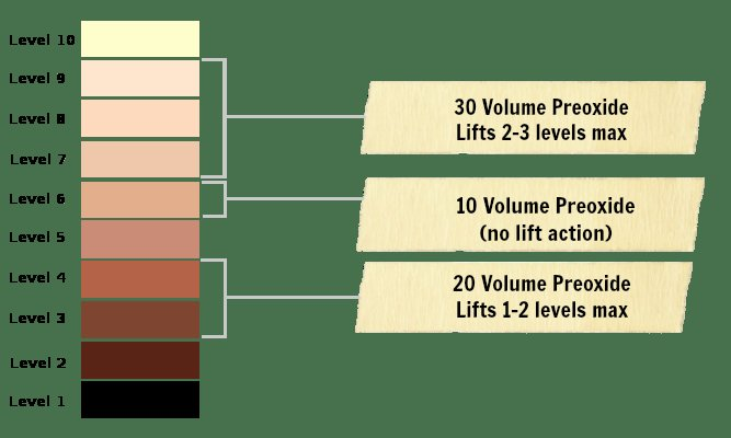 The Best How Much 20 Volume Developer To Mix With Hair Color The Pictures