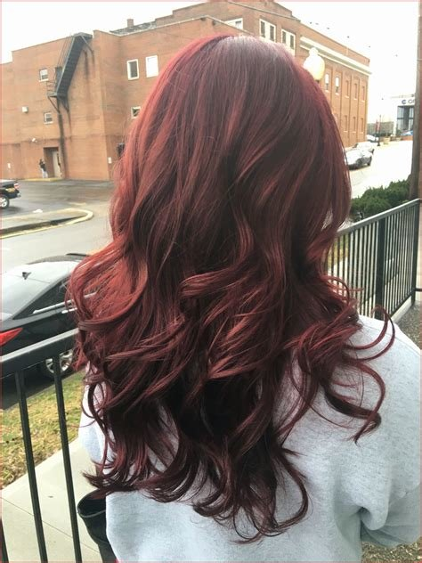 The Best Age Beautiful Dark Plum Brown Hair Color Image Of Hair Pictures