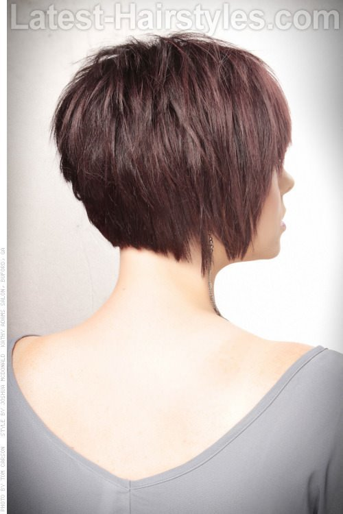 The Best Layered Bob Hairstyles Back View Bing Images Hair Pictures
