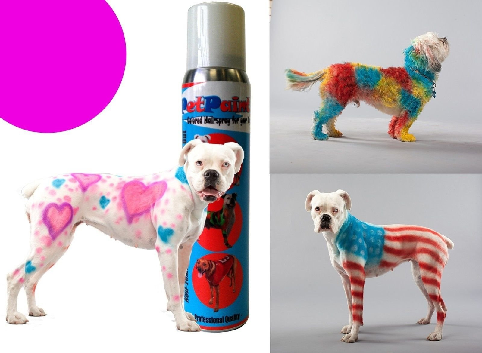 The Best Pet Paint Dog Animal Safe Temporary Hairspray Hair Color Pictures