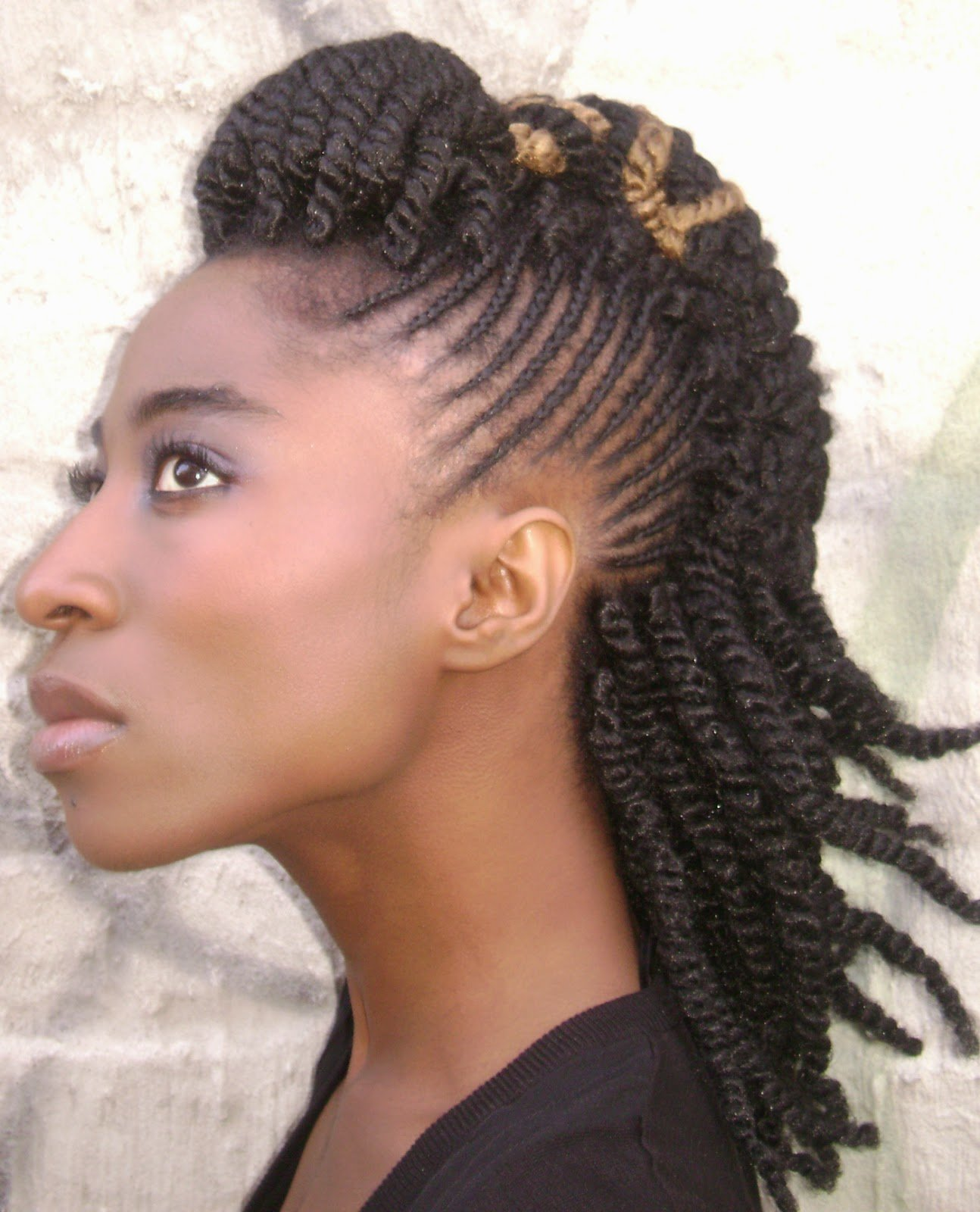 The Best Top 18 2014 Africa America Updo Braids Hairstyles Gallery Pictures