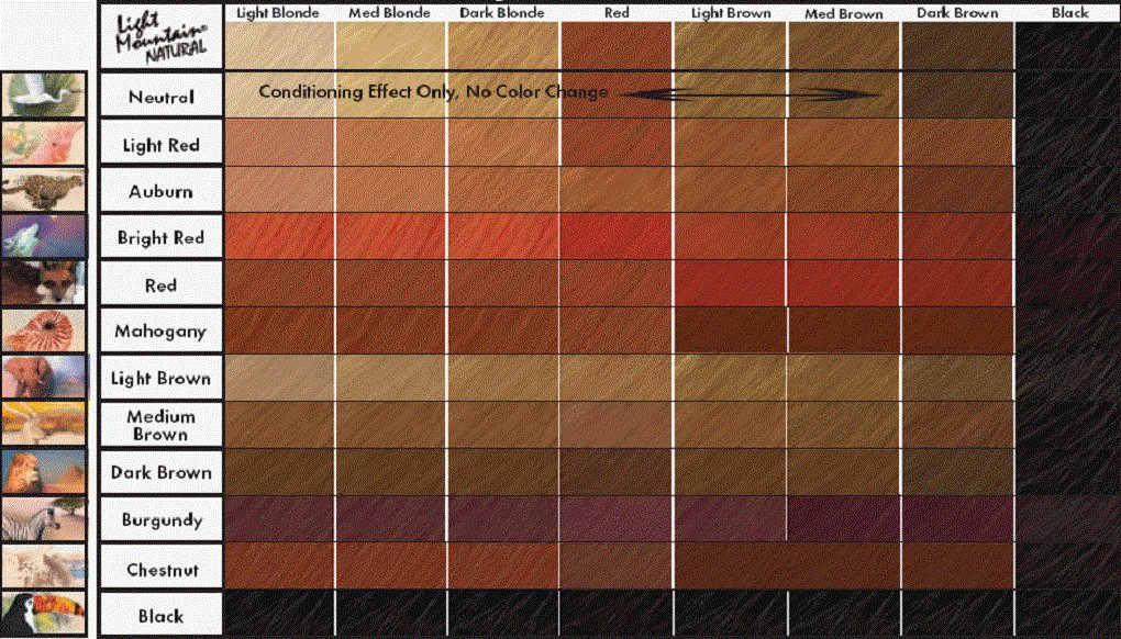 The Best Brown Hair Color Chart Coloring Hair And Hair Highlighting Will Be More Typical Trends Pictures
