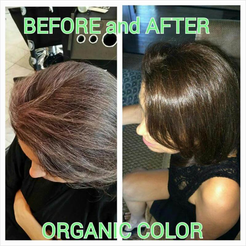 The Best Naturals Permanent Hair Color Process That Is Naturally Based Non Toxic And 100 Ammonia Free Pictures