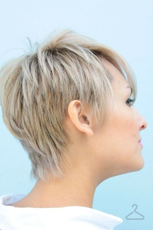 The Best Back View Short Haircuts For Women Haircuts Hairstyles 2018 Pictures