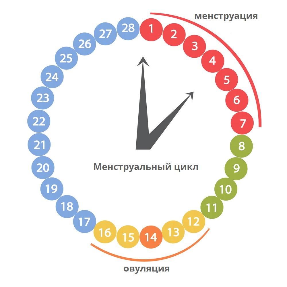 етеккір циклі