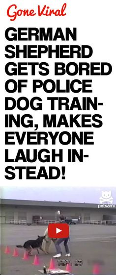 Make Me Laugh Walkthrough Text