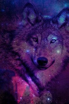 galexy on Pinterest | Purple Wallpaper, Wallpapers and ...