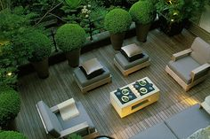 1000 Images About House Amp Garden On Pinterest Hedges