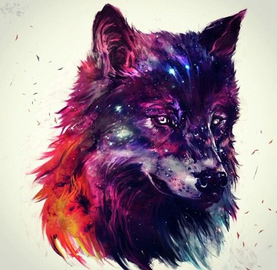 Galaxy wolf | Wolf and dog | Pinterest | Galaxies, Love ...