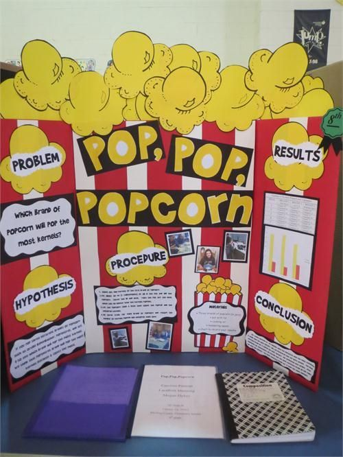 Bubble Biggest Project Science Gum Display Fair Board