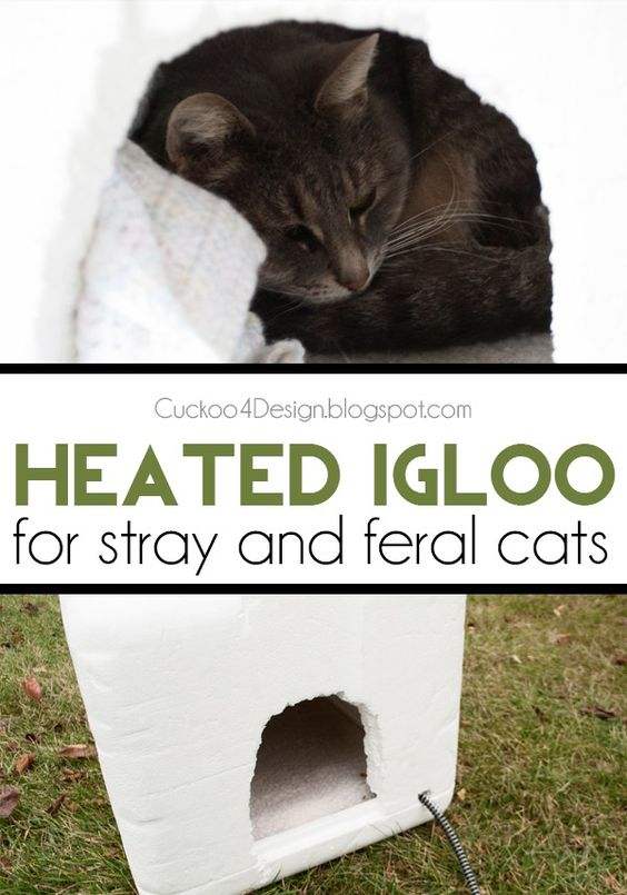 Heated Cats Outside Shelters