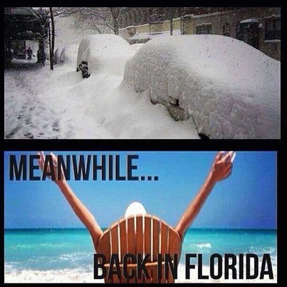 Warm Weather January Meme