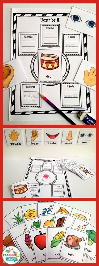 Senses Five Organizer Kindergarten Graphic