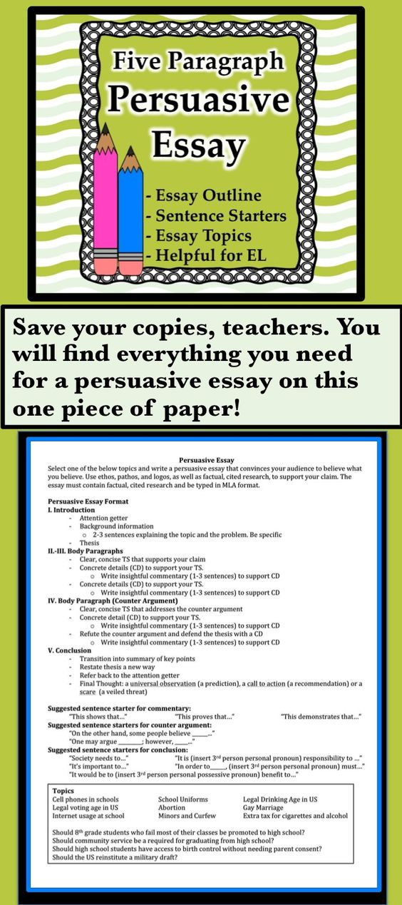 Essays About High School  Business Essay Structure also How To Write An Essay For High School Essays Topics Possible Persuasive Business Essay Format