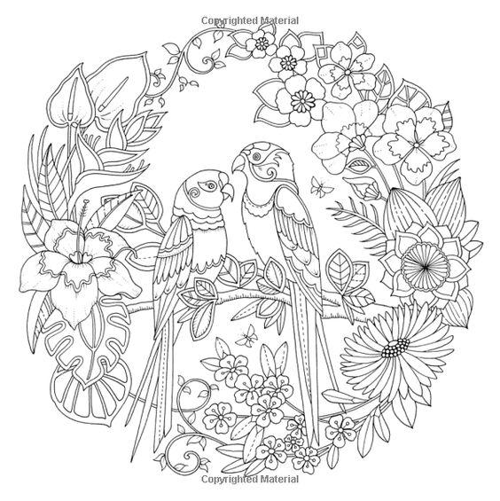 Johanna Basford Magical Jungle Coloring Pages