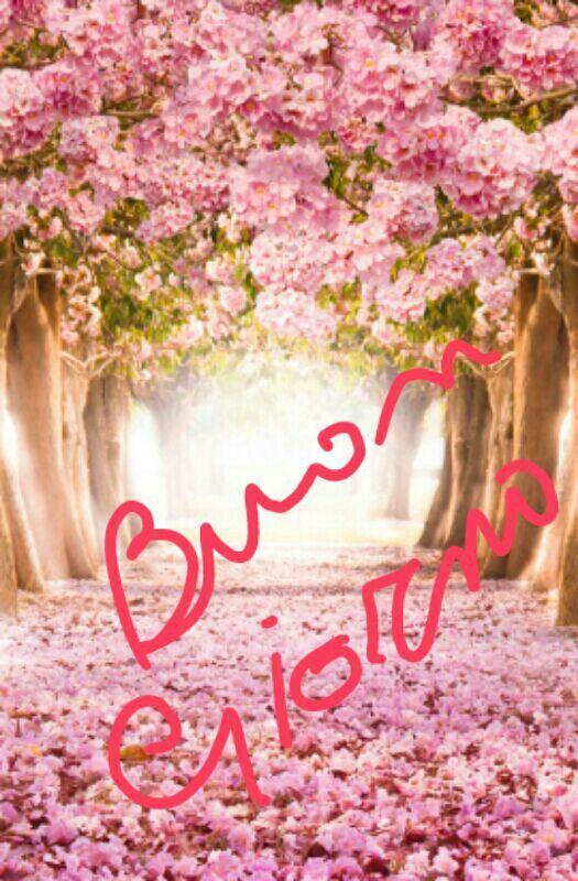 Beautiful Jesus Backgrounds