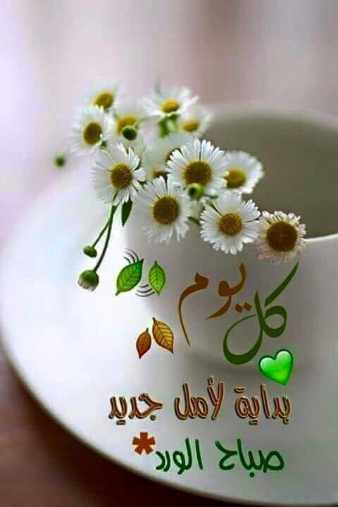 Lovely Islamic Quotes And Sayings
