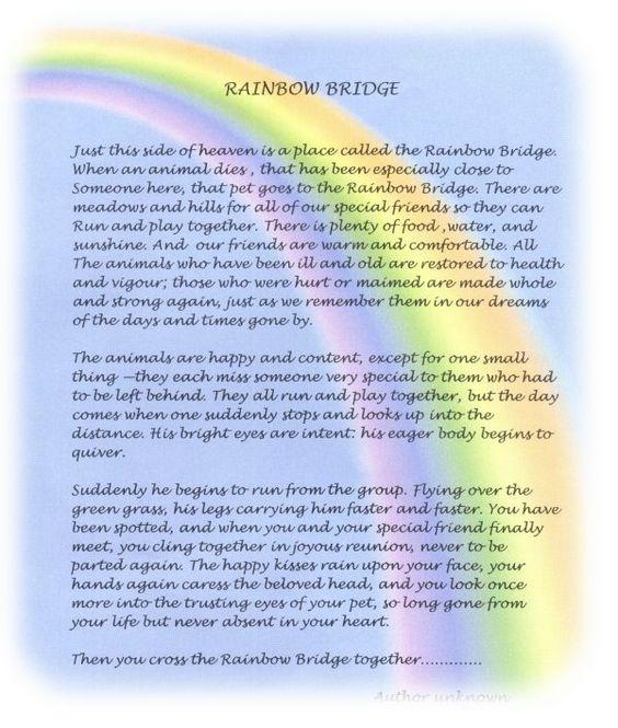 Poem Printable Dogs Rainbow Bridge