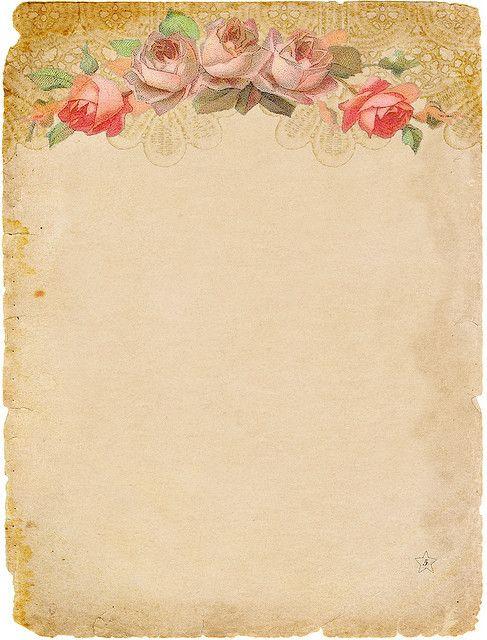 Pink And Art Border Cream Rose Vintage Clip