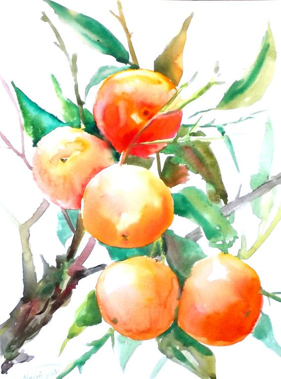 Fresh Fruit And Veg Online