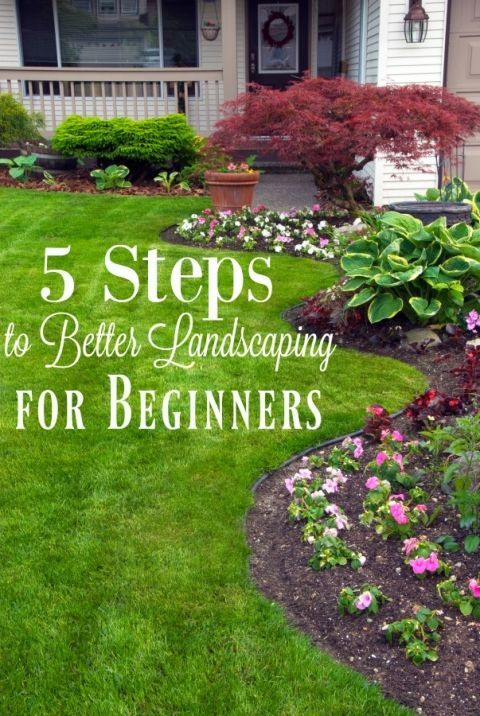 Landscape Design Beginners