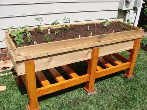 Above Ground Vegetable Garden Plans