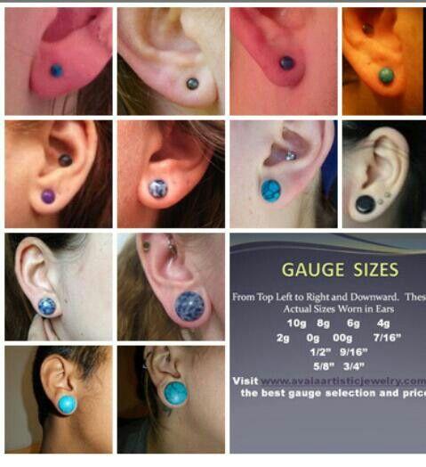 Smallest Gauges Ears